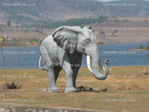 elefante-watermark